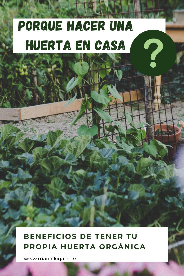 Huerta En Casa Huerta Como Hacer Un Huerto Medio Ambiente