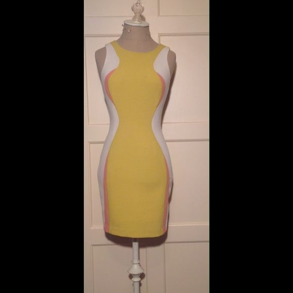 Wave Body Con Dress Bodycon dress. Minor stain on top right chest. Yellow, Light Pink, White.       Length: 32in.  and  Bust: 30in.      Material: 100%-Polyester. The Impeccable Pig Dresses