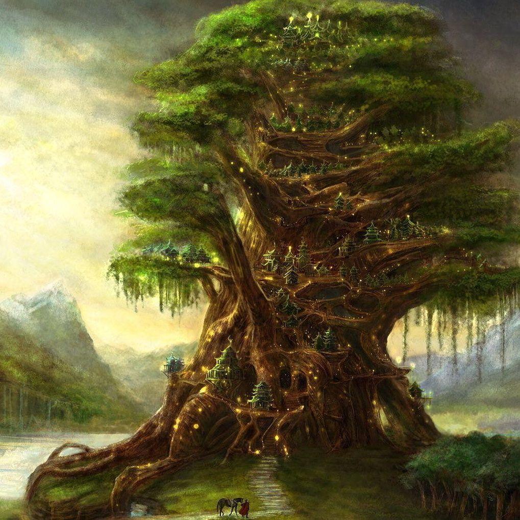 Salvatore Tree 8502e6653ec559d4dc2f2c98bb9dcb90