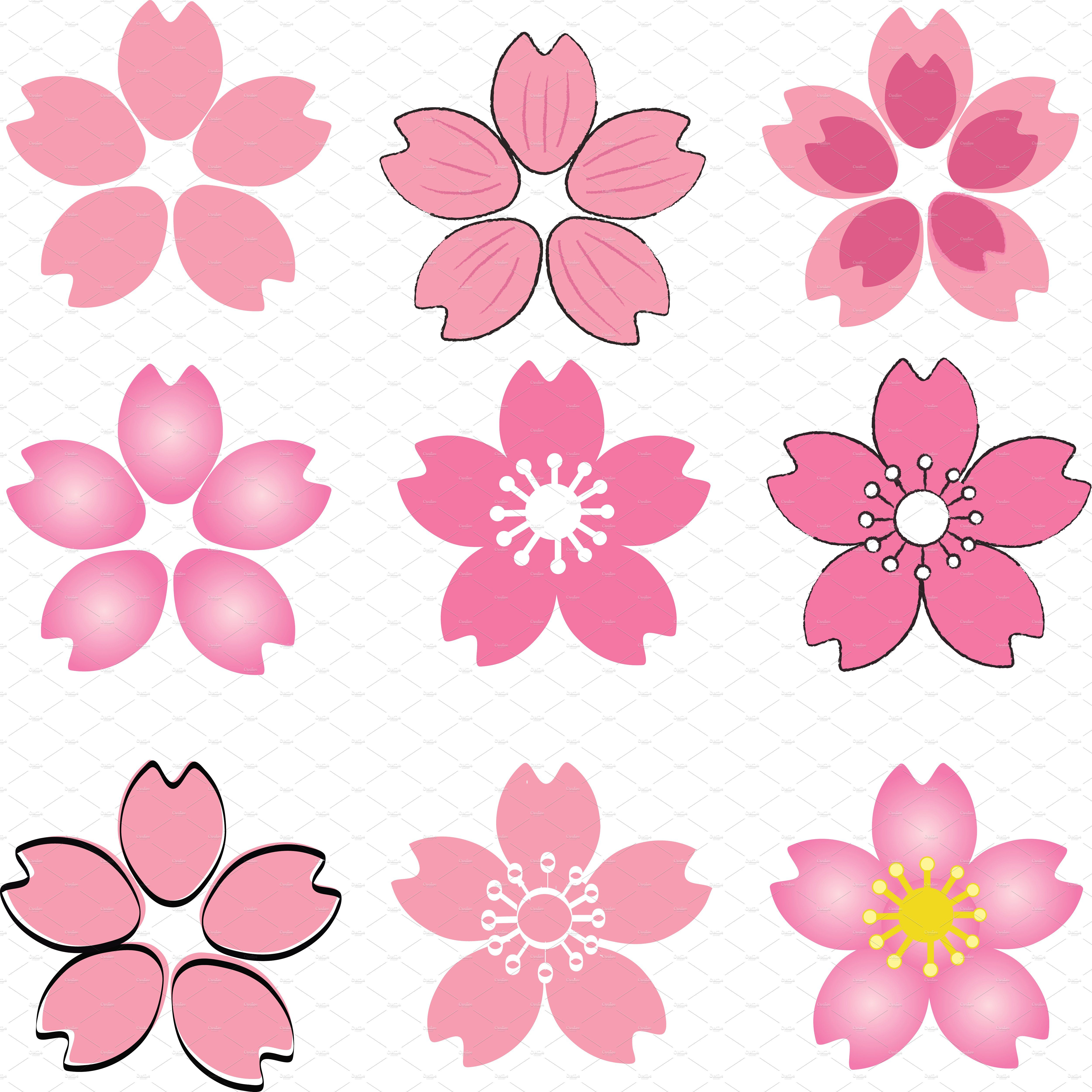 Set Of Pink Cherry Blossom Cherry Blossom Drawing Cherry Blossom Petals Cherry Blossom Flowers