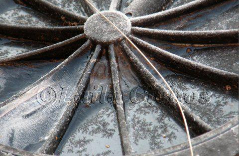 Blomsterhjul (scheduled via http://www.tailwindapp.com?utm_source=pinterest&utm_medium=twpin&utm_content=post165452959&utm_campaign=scheduler_attribution)