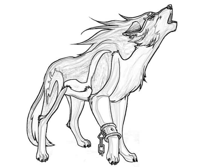 Fire Wolf Anime Wolves Coloring Pages Animal Templates Wolf Colors Wolf Drawing Easy