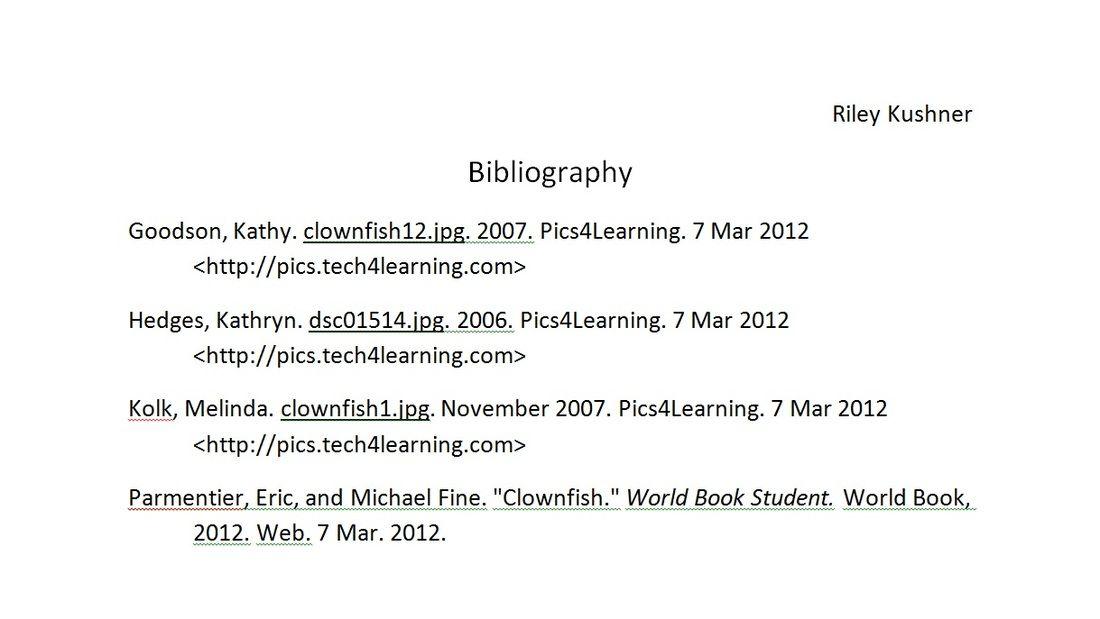 Mla format bibliography website example essay format