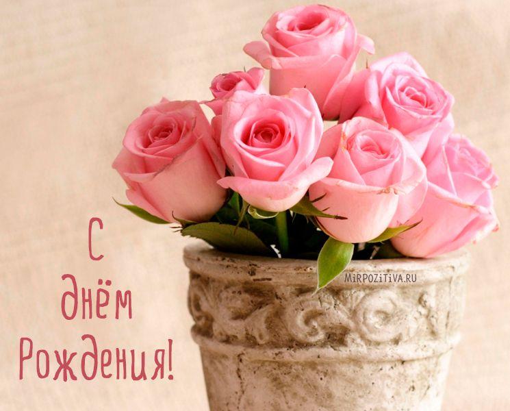 цветы с днём рождения картинки