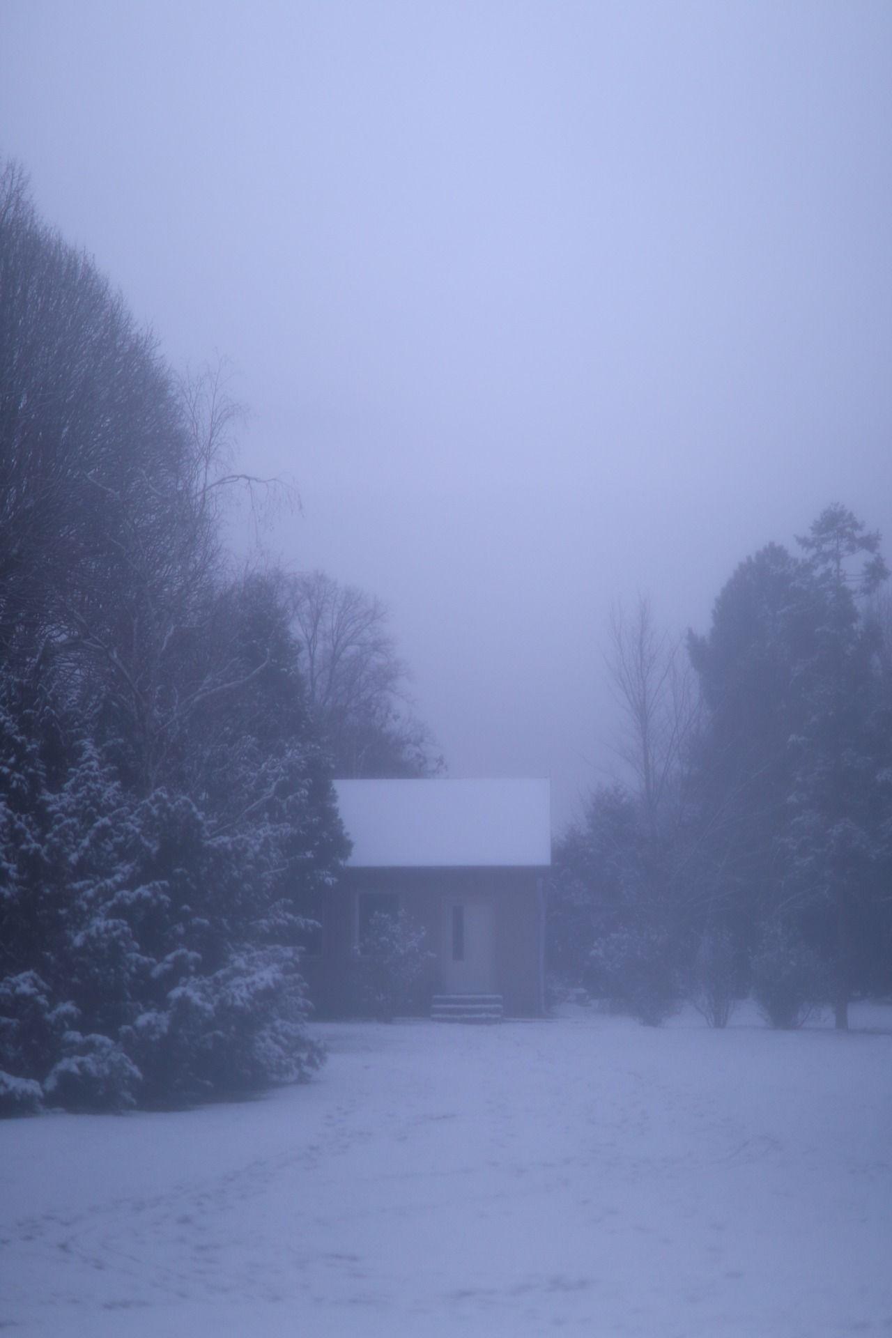 Winter Guest Berlin Botanischer Edit Fog Friday Garten Meolog No On Original Pankow Photographers Snow Source Tumblr Wint Pankow Guest Winter