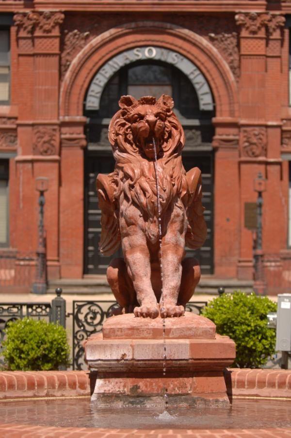 terra chat leon
