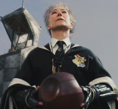 Madam Hooch Costume Google Search Harry Potter Professors Harry Potter Wiki Harry Potter Characters