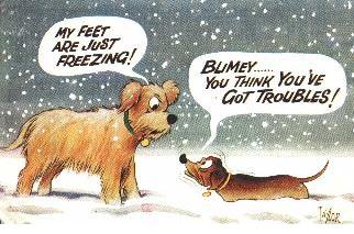 Snow Day Memes 2019
