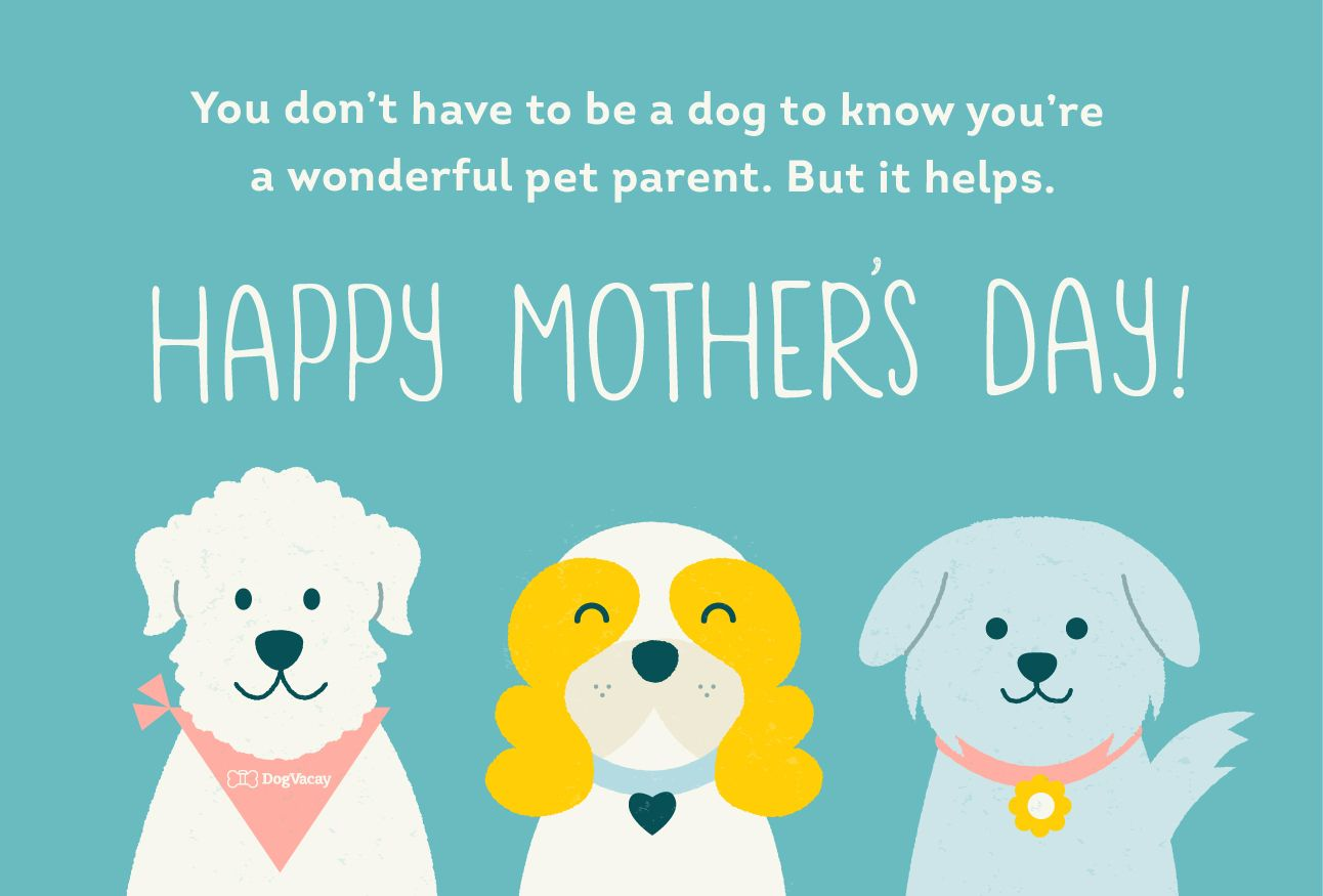 Happy Mother S Day To Pet Parents From The Dog And Cat Dogvacay Official Blog Pet Mom Happy Mothers Day Happy Mothers