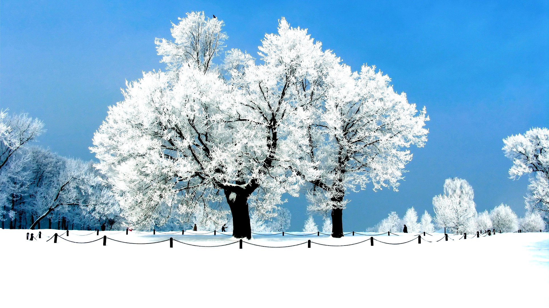 Winter Wallpapers Full Hd Winter Wallpaper Fondecraniphonemarbre Winter Wallp Winter Wallpapers Full Hd Winter Wallpaper Fondecranip 2020 Arka Plan Fonlar