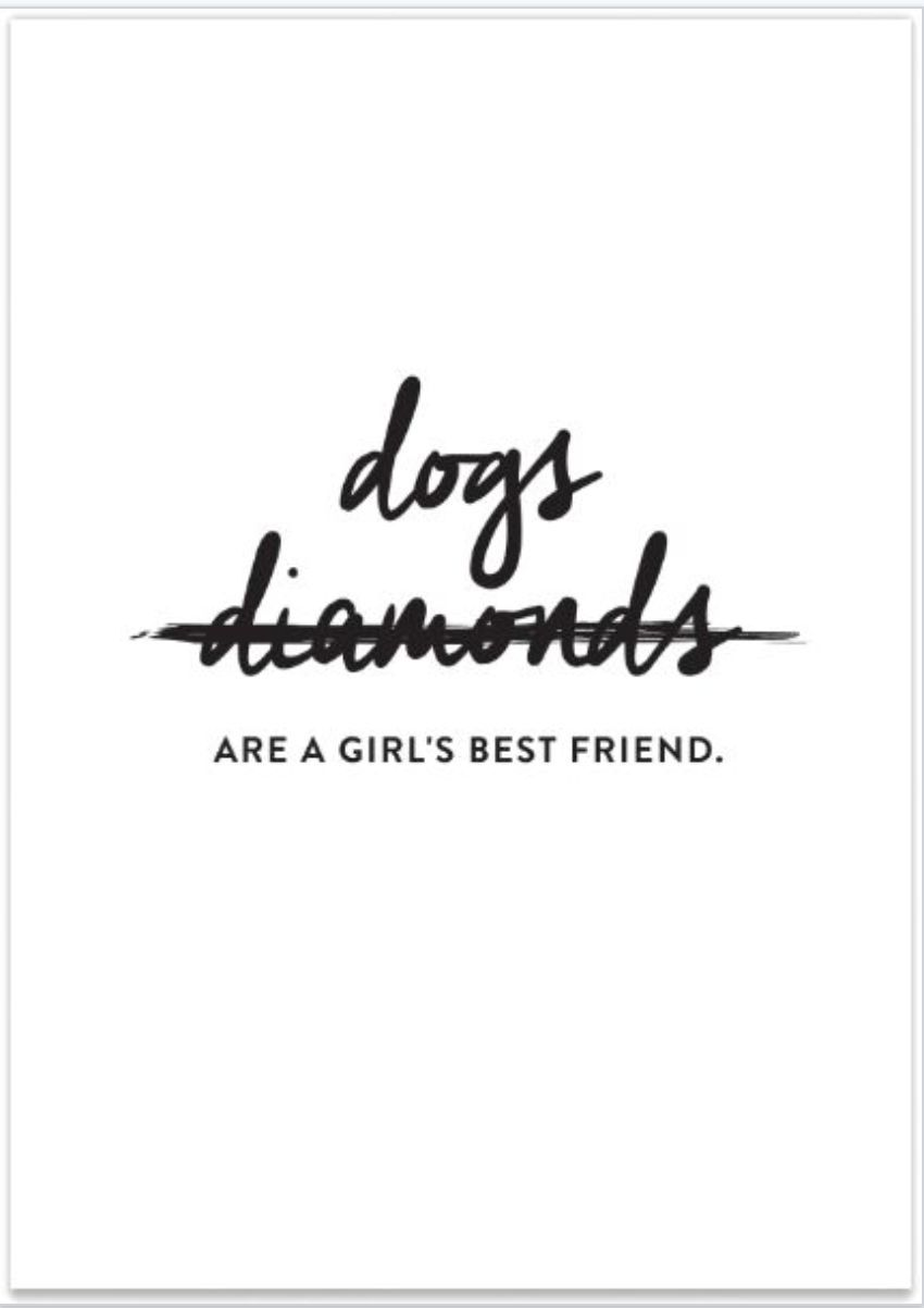 Dog's Are A Girls Best Friend | words | Dog friends, Dog quotes