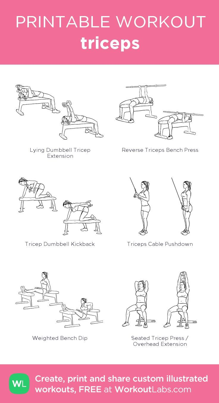 triceps · WorkoutLabs Fit #bicepsworkout
