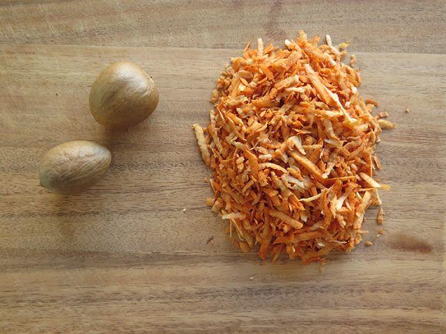Avocado Seed Shampoo | The Rogue Ginger