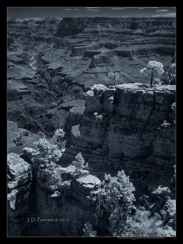 South Rim Summer View (Infrared)  (Click the image to see a larger version.)