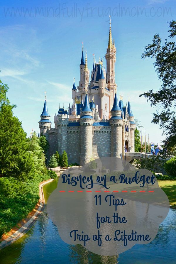 Disney World on a Budget: 11 Tips to Save money on the trip of a lifetime!