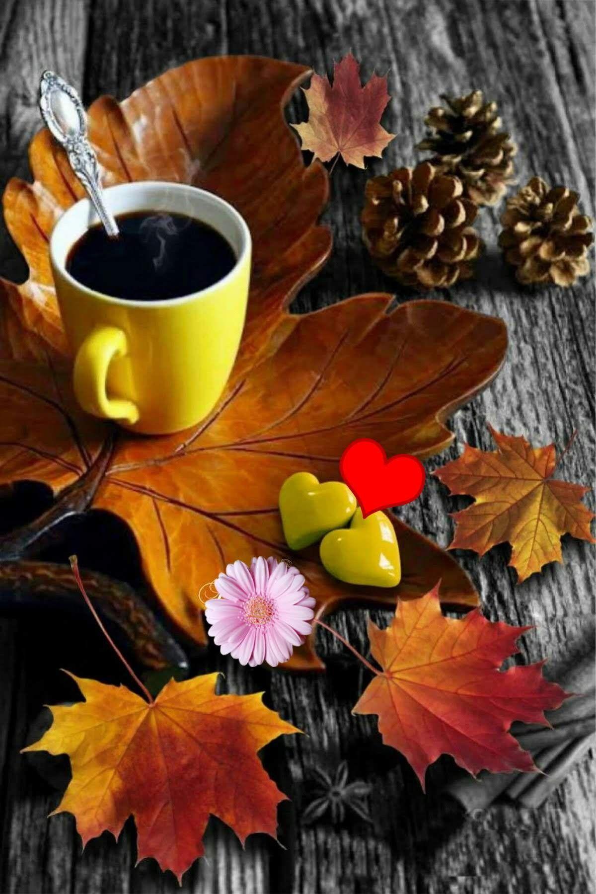 Картинки кофе шоколад осень, мультфильмами для детей
