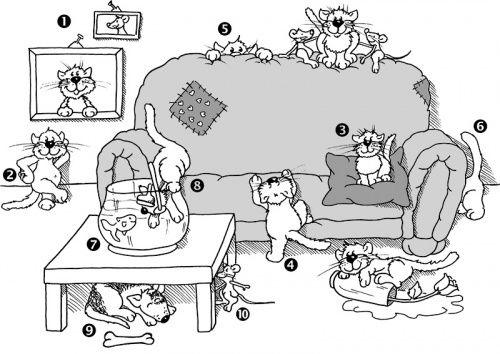 Prpositionen Deutsch Tiere Lagebeziehung Mathe Rumliche Lage Raum Katze