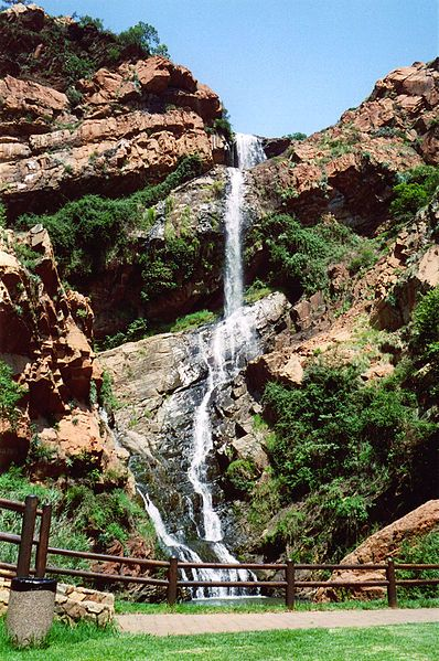 Witpoortjie Falls in Walter Sisulu Botanical Gardens  Witwatersrand National Botanical Gardens ~ South Africa