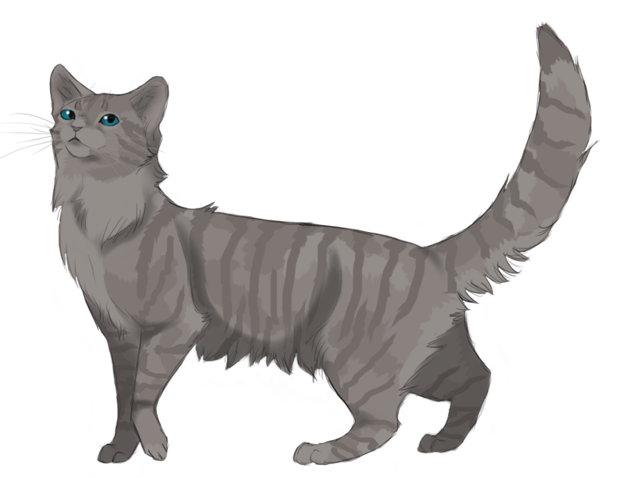 Cinderheart. Warrior of ThunderClan. Daughter of Sorreltail. Good friends with Lionblaze. Friends: Lionblaze. Siblings: Unknown. Crush: Lionblaze. Mate: none. Kits: none. (Played by @imsoflywarriors)