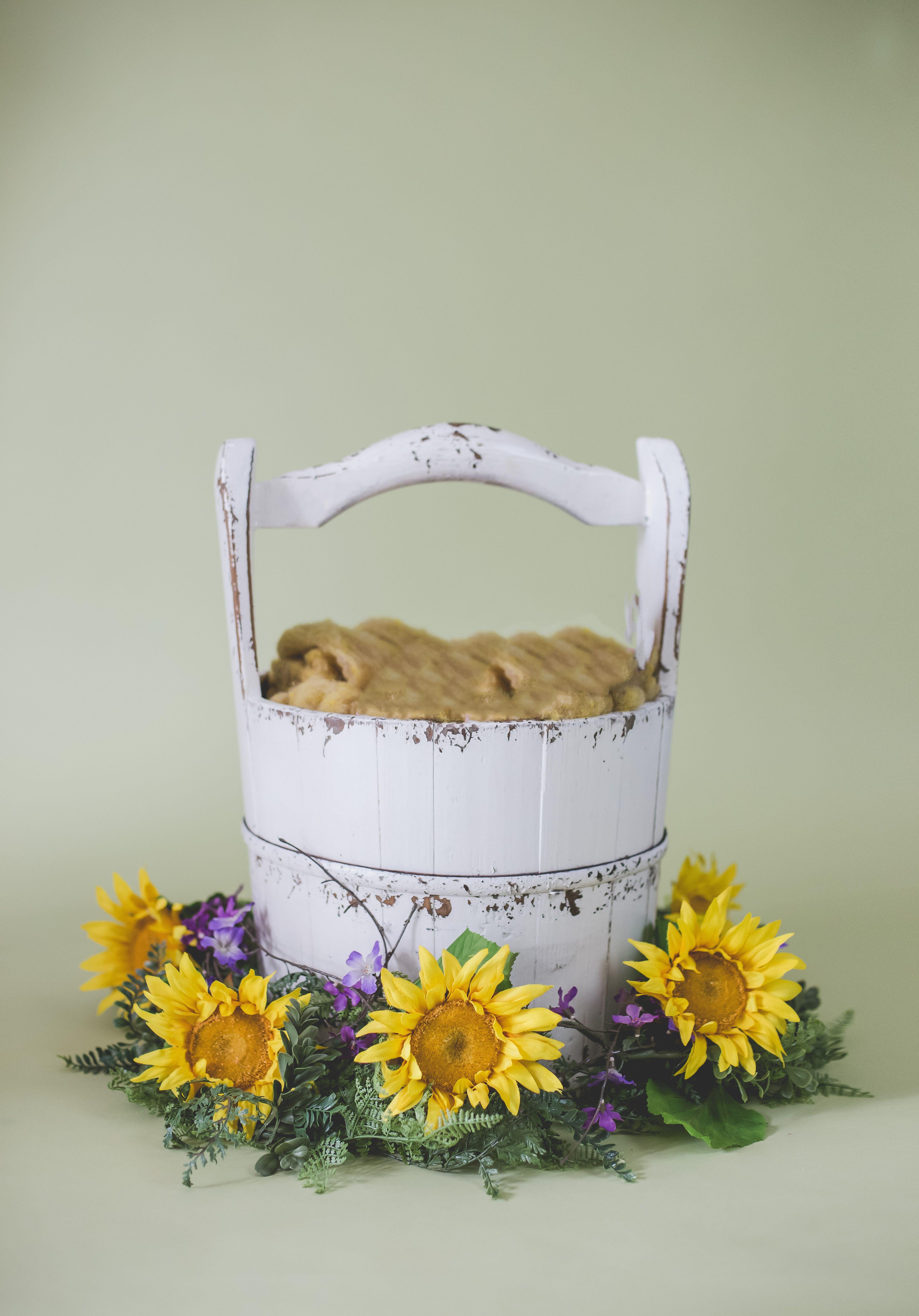Baby Bed Ideas Newborns
