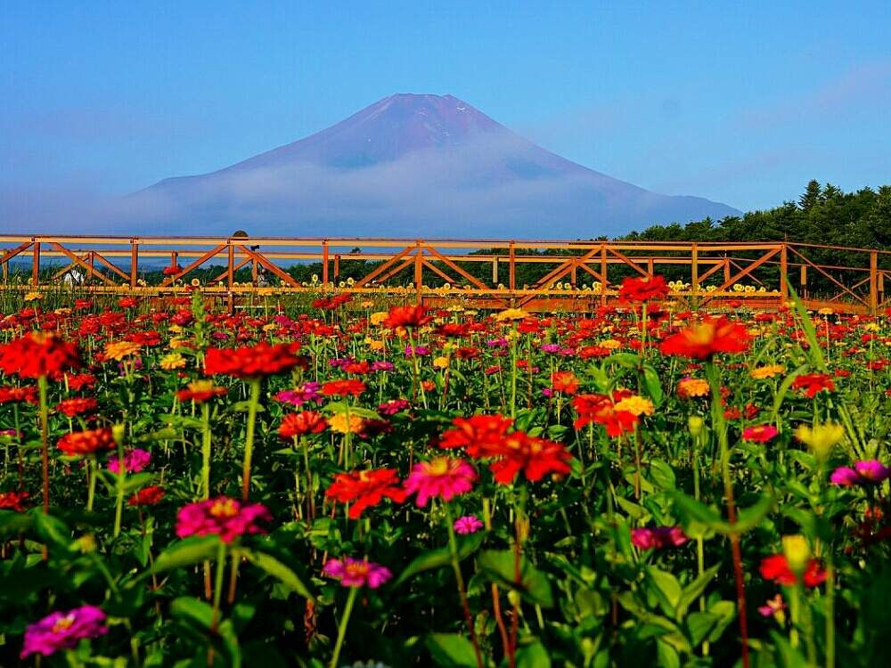 Misaoiさんの投稿 お出かけ先 In 2020 Natural Landmarks Nature Landmarks