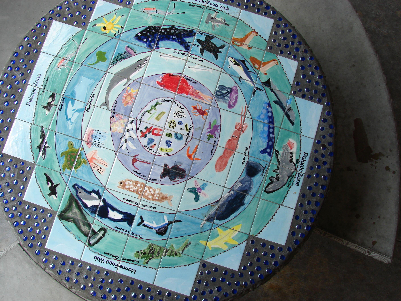 Ocean Food Web Matthys Elementary In Pasadena Isd