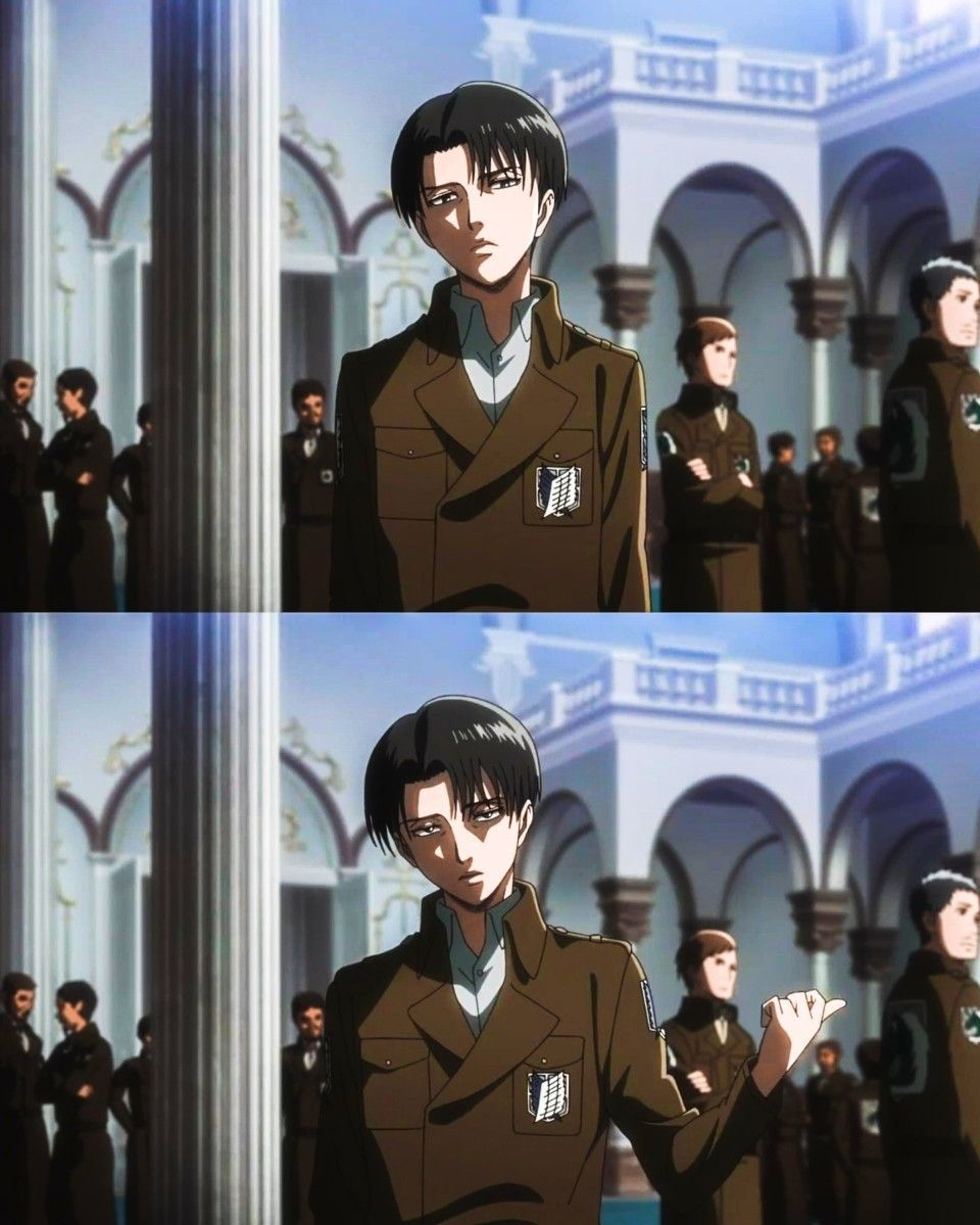 Just Look At This Perfect Piece Of Cuteness Attack On Titan Levi Levi Ackerman Attack On Titan