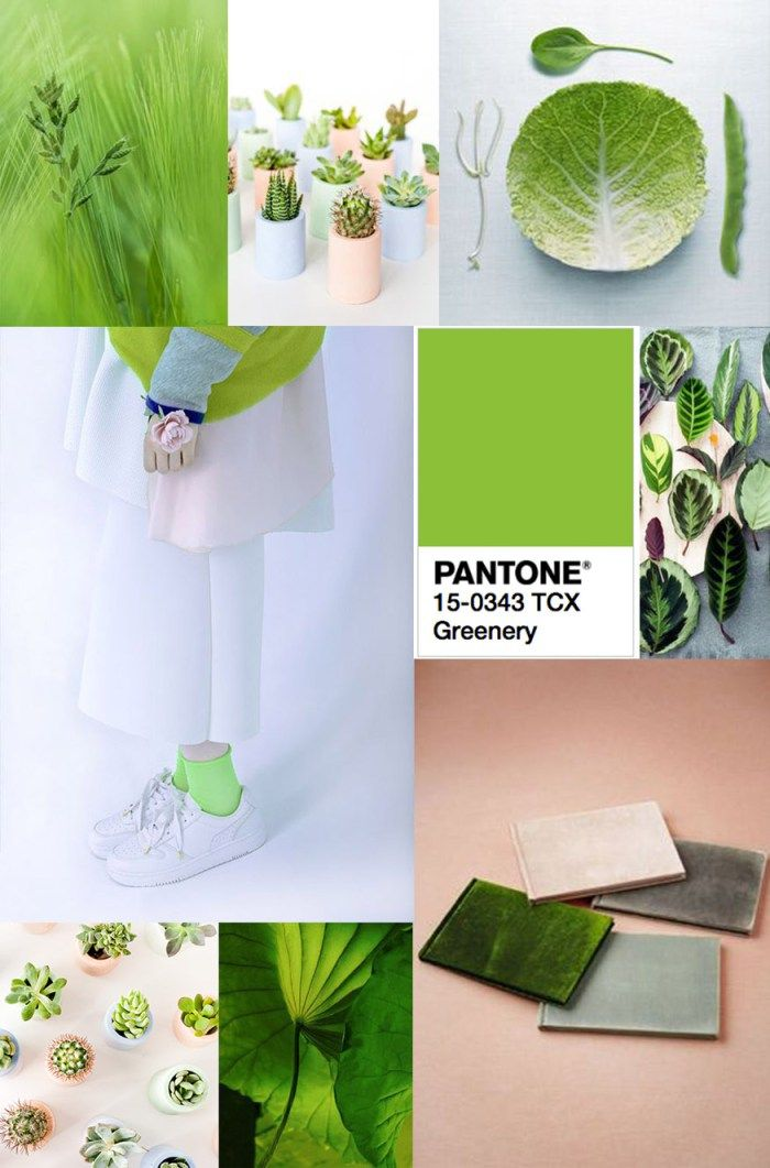 Pantone 2017 Colour Of The Year Greenery Pantone2017 Latest Interior Trends