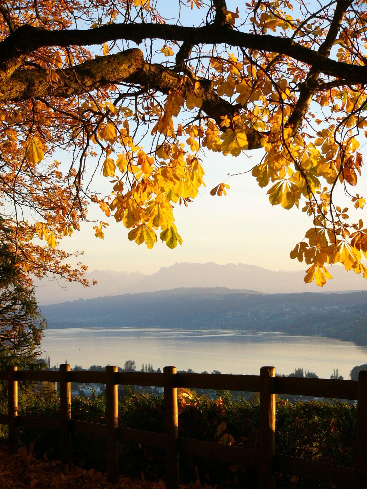 Hotel Restaurant Eichberg, Herbst 8, Seengen, Hallwilersee, Seetal, Aargau, Suisse, Schweiz, Switzerland. www.vch.ch/eichberg/