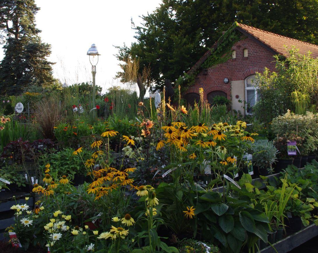 Blütenpracht in der Königlichen Gartenakademie: Unsere Gärtner nehmen sich Zeit für individuelle Wünsche unserer Kunden