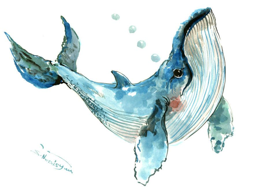 Humpback Whale 12 X 9 In Original Watercolor Painting Sea World