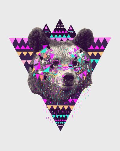 Pinata Bear By Kris Tate