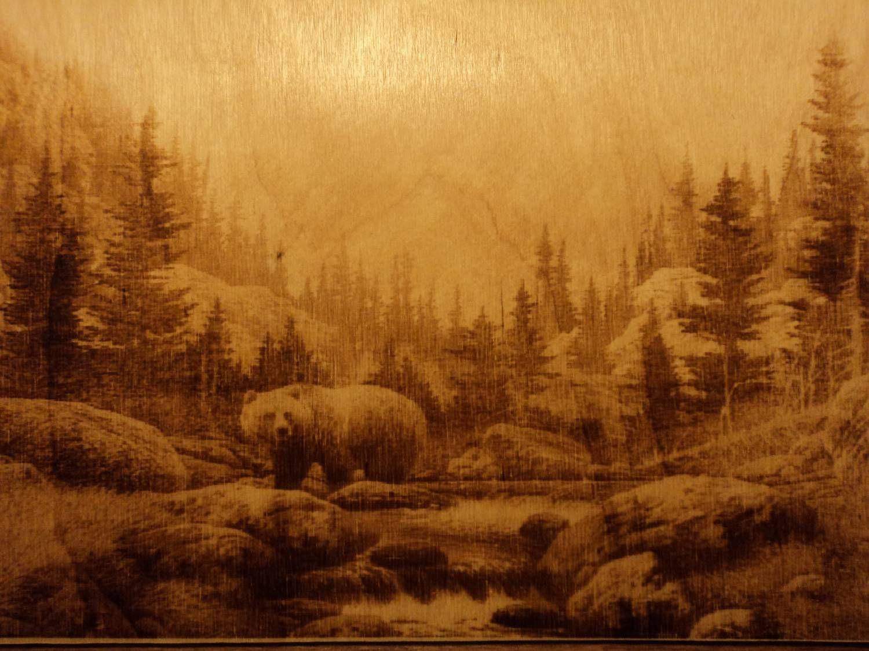 лес картинки для выжигания по дереву для вот возникла