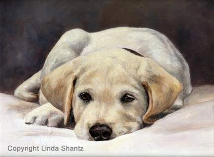 Best behaviour by Linda Shantz A wonderful artist!