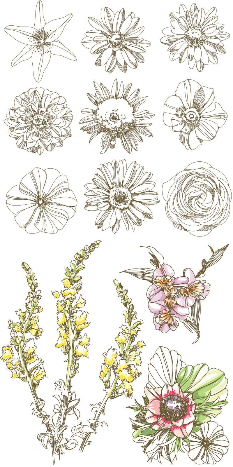 Flowers Vector Ai Eps Free Download Flower Drawing Vintage Flower Tattoo Flower Art
