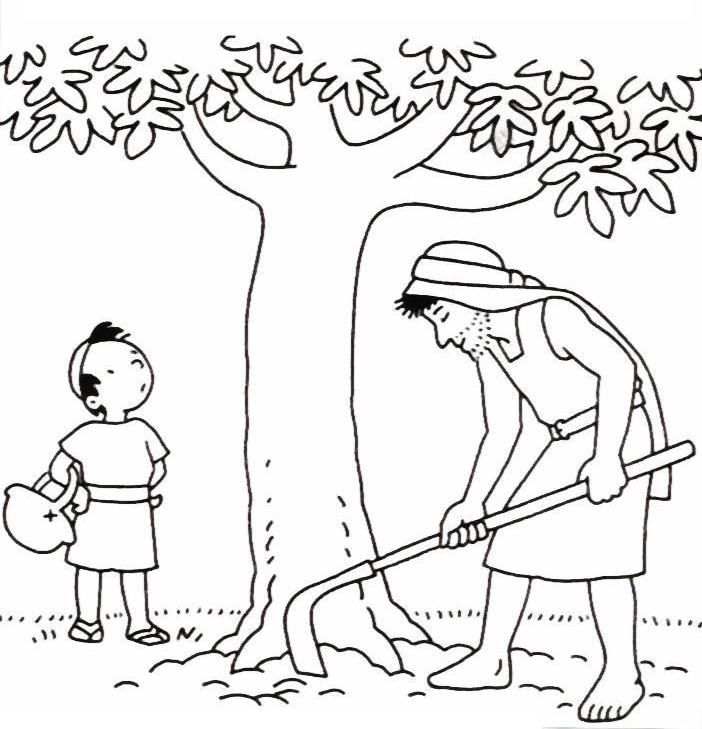 The Barren Fig Tree Tree Coloring Page Fig Tree Coloring Pages