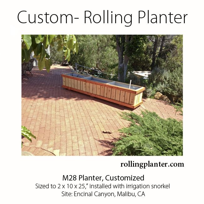 Rolling Planters Commercial Quality Rolling Planter 25 Tall Grow Almost Anything Great For Pla Outdoor Landscaping Raised Planter Beds Garden Planter Boxes