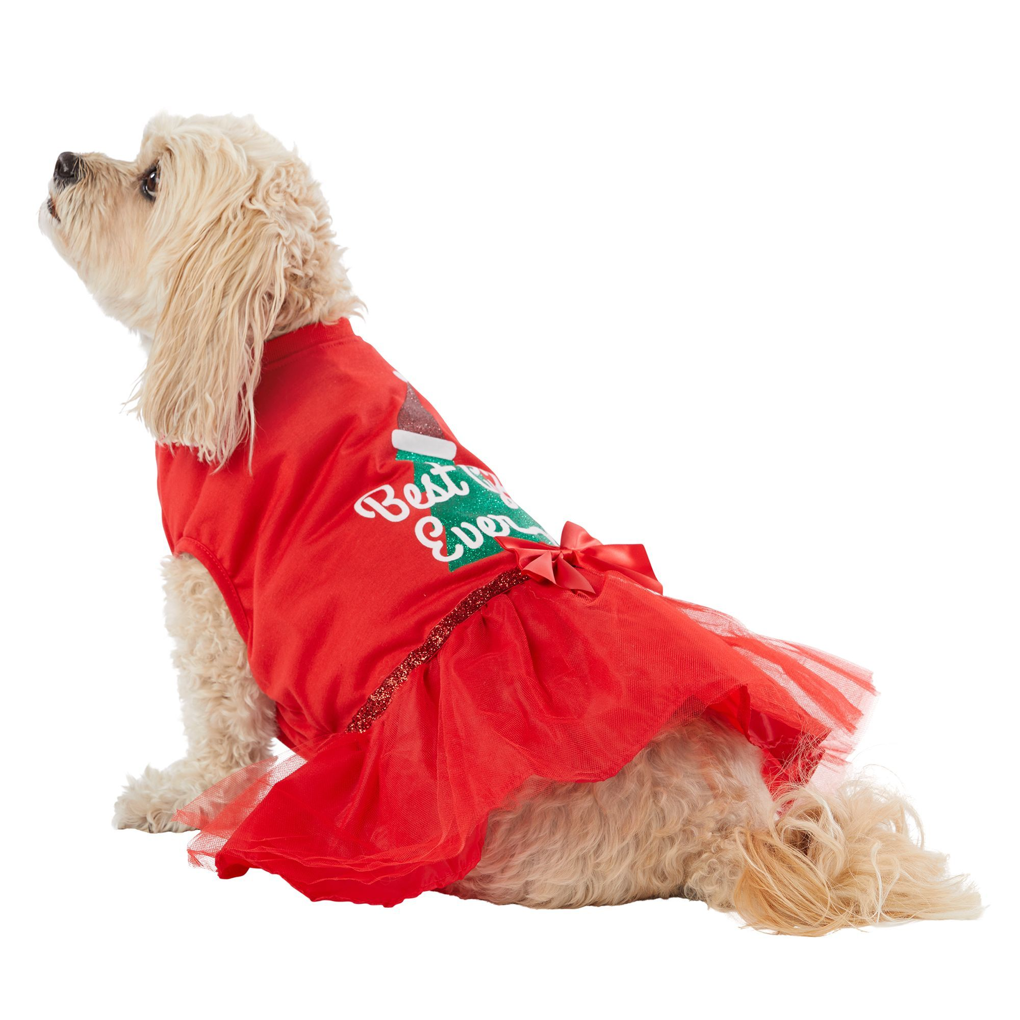 Merry And Bright Holiday Best Gift Ever Tulle Pet Dress Size 2x Small Merry Bright Green Red Wash Pet Dress Pet Spray Pets