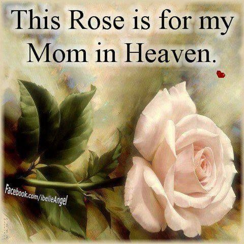 My Mom In Heaven Quotes Quote Family Quote Family Quotes Heaven In