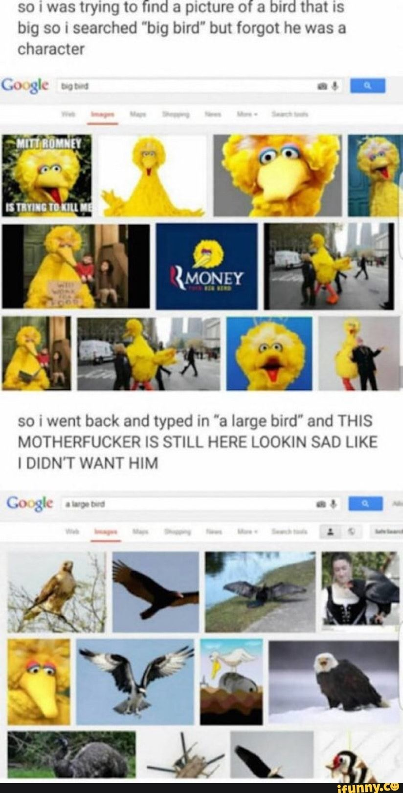 """So : was trying to find a picture of a blfd that IS blg so I searched """"blg bard"""