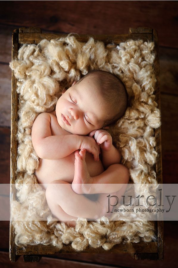 baby in crate   newborn photography
