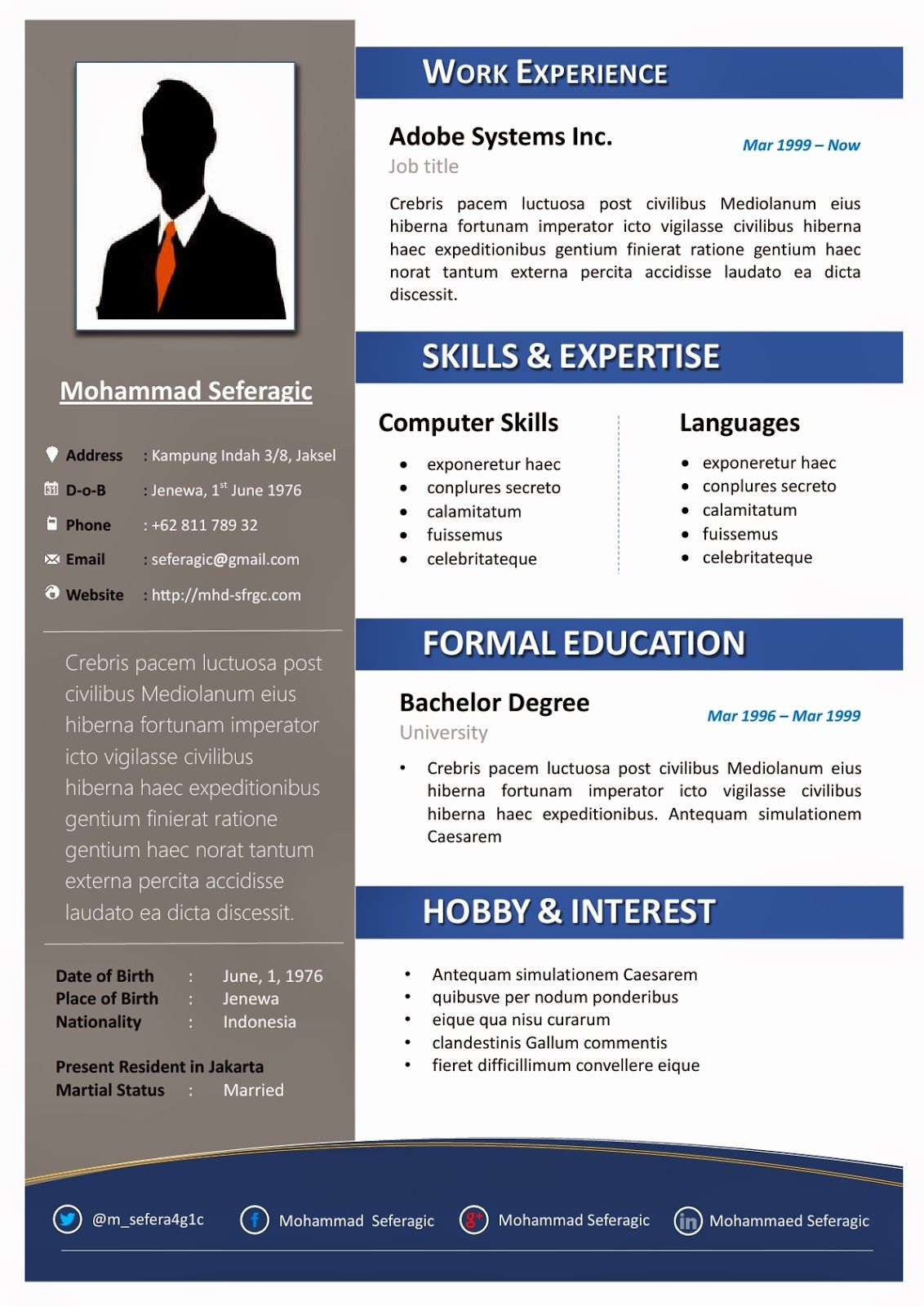 professional resume template microsoft word click here for