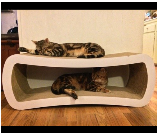 Petfusion Jumbo Cat Scratcher Lounge Offers Your Cats A Comfortable Place To Rest And Scratch At The Same Time