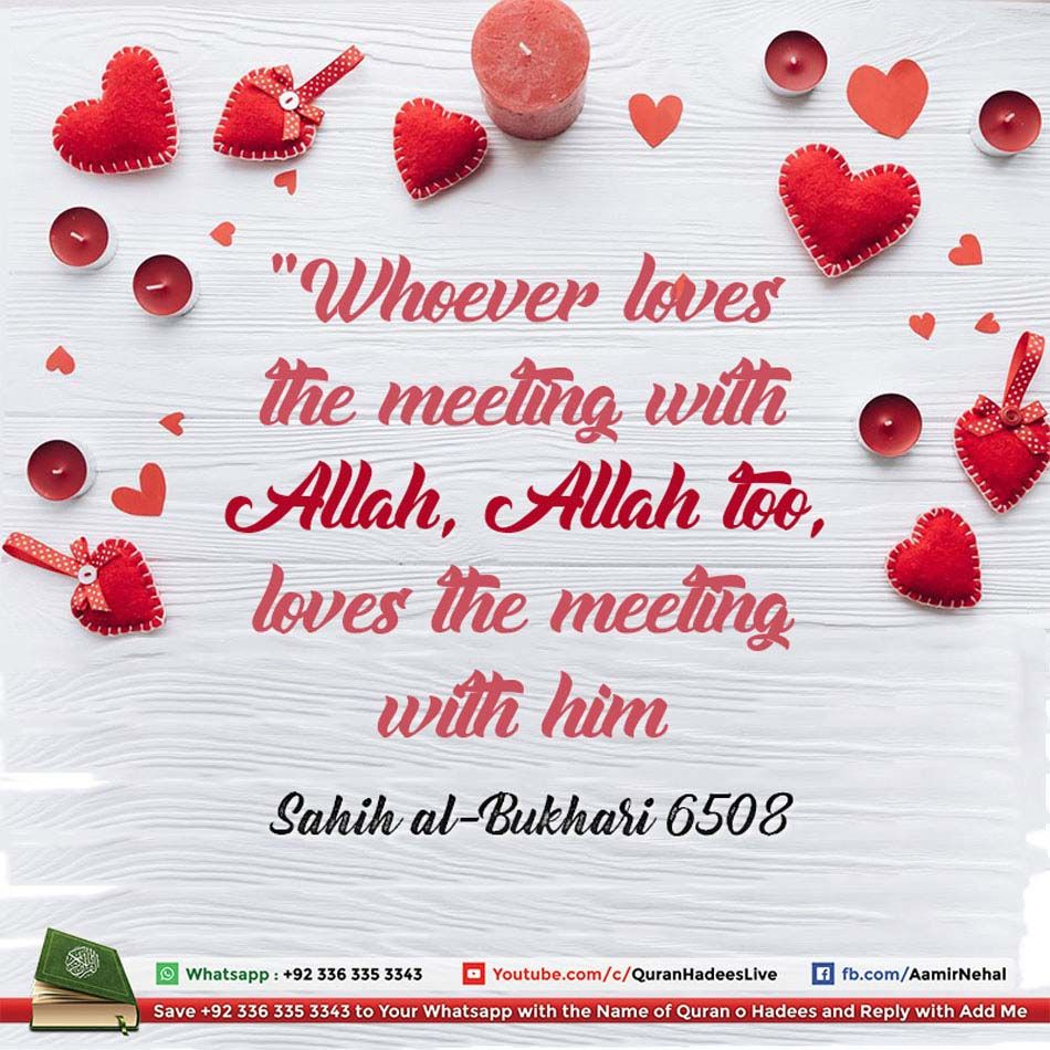 Whoever Loves To Meet Allah Allah Too Loves To Meet Him Islamic
