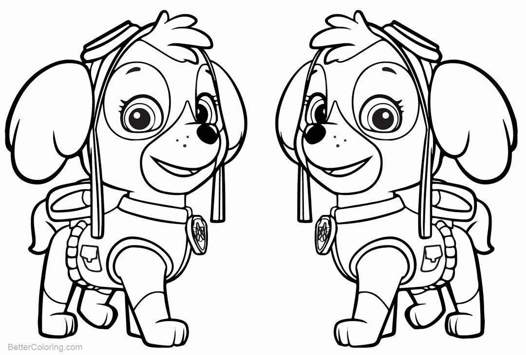 Skye Paw Patrol Coloring Page Lovely Paw Patrol Coloring Pages Skye Free Printable Coloring Pages Paw Patrol Coloring Horse Coloring Pages Dog Coloring Page