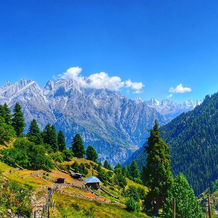 A Very Popular Sightseeing Attraction Sangla Meadow Is Located