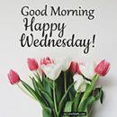 Happy Wednesday!  ArtFestival.com