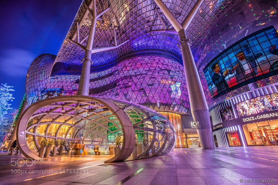 Future Canopy City Architecture Canopy Architecture