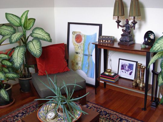 A Little Piece Of Peace Right In Your Living Room. I Love How The Plants