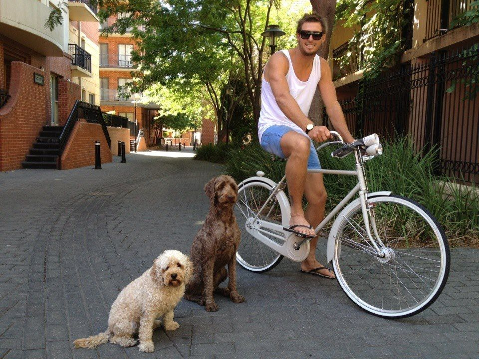 Dogs, sunny day and an Amante bike! This is Abici in Australia!